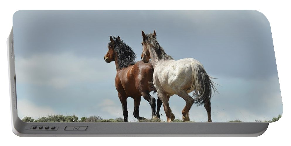 Wild Horses Portable Battery Charger featuring the photograph We Will Be Over the Hill in a Few Seconds by Frank Madia