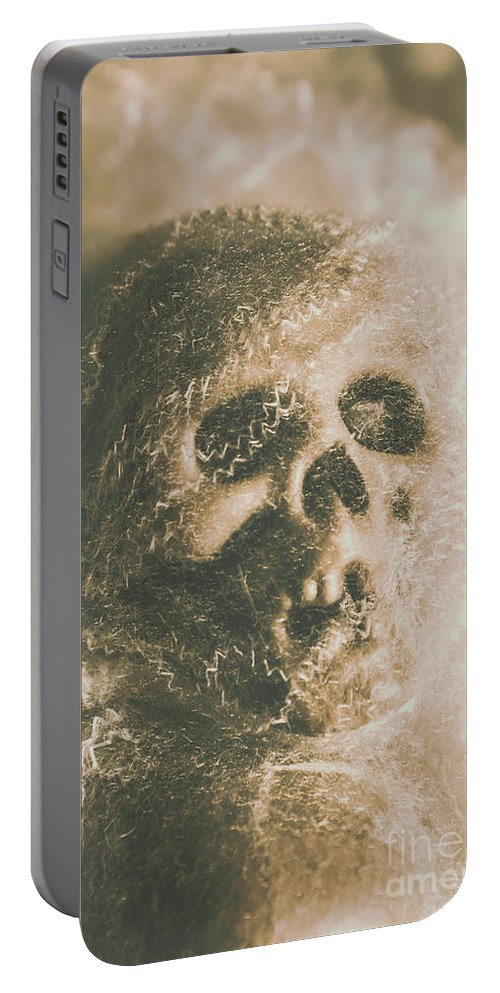 Bone Portable Battery Charger featuring the photograph Webs And Dead Heads by Jorgo Photography - Wall Art Gallery