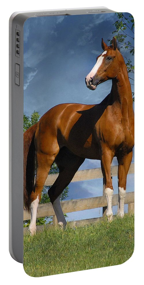Horses Portable Battery Charger featuring the photograph Welt Adel by Fran J Scott