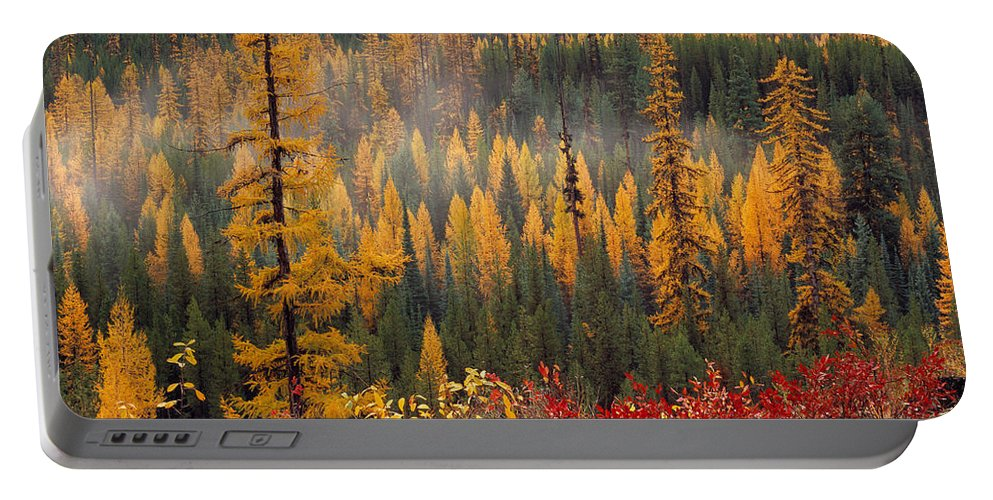 Washington Portable Battery Charger featuring the photograph Western Larch Forest Autumn by Leland D Howard