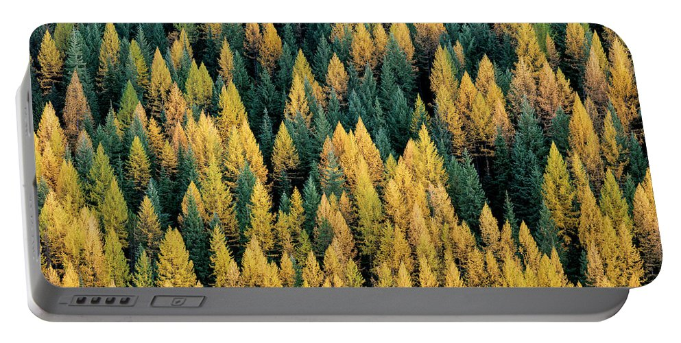 Idaho Scenics Portable Battery Charger featuring the photograph Western Larch Forest by Leland D Howard