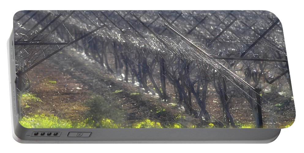 Wet Vineyard At Lachish Portable Battery Charger featuring the photograph Wet Vineyard by Dubi Roman