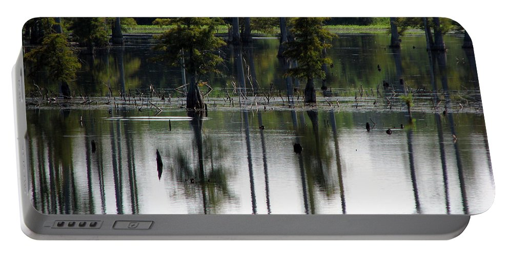 Wetlands Portable Battery Charger featuring the photograph Wetland by Amanda Barcon