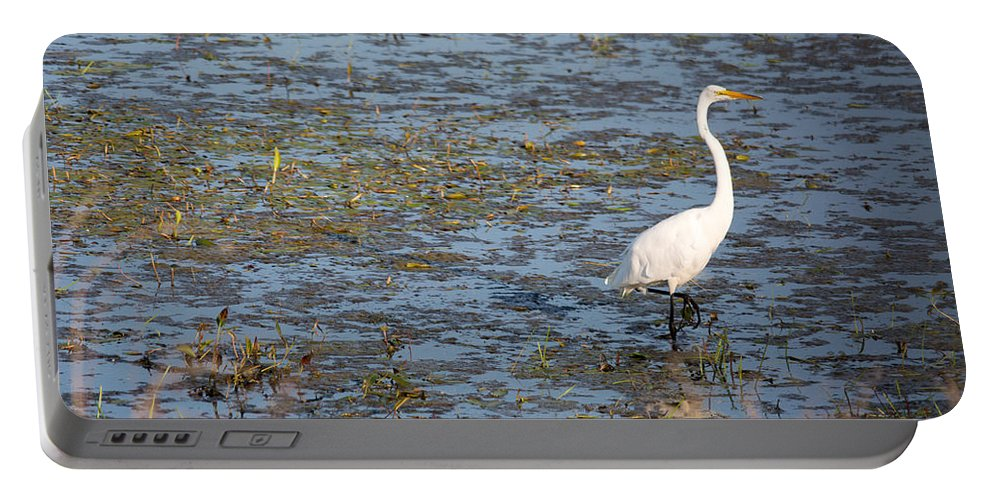 Great Egret Portable Battery Charger featuring the photograph Wetland Wader by Linda Kerkau