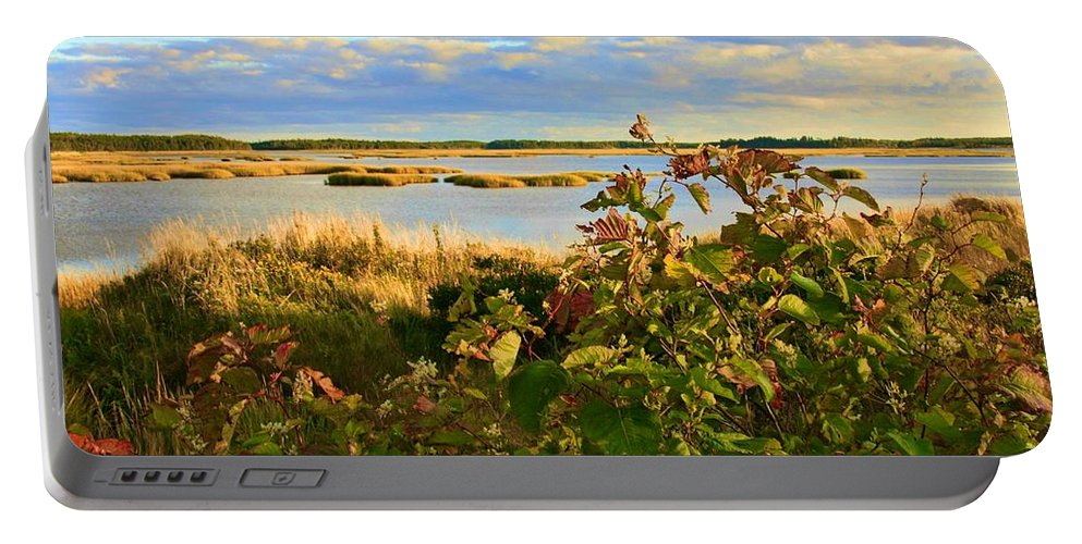 Wetlands Portable Battery Charger featuring the photograph Wetlands In Cape Breton by Tatiana Travelways