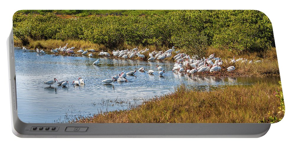 Birds Portable Battery Charger featuring the photograph Wetlands Watering Hole by John M Bailey