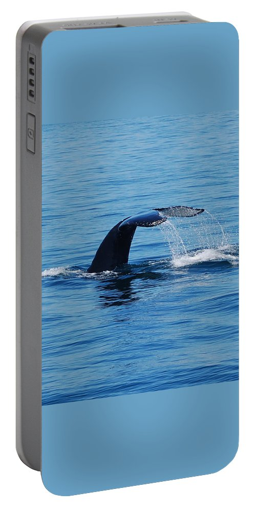 Whales Portable Battery Charger featuring the photograph Whales Tale by Lisa Kane