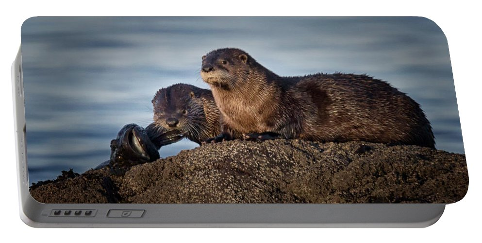 River Otter Portable Battery Charger featuring the photograph Whats For Dinner by Randy Hall