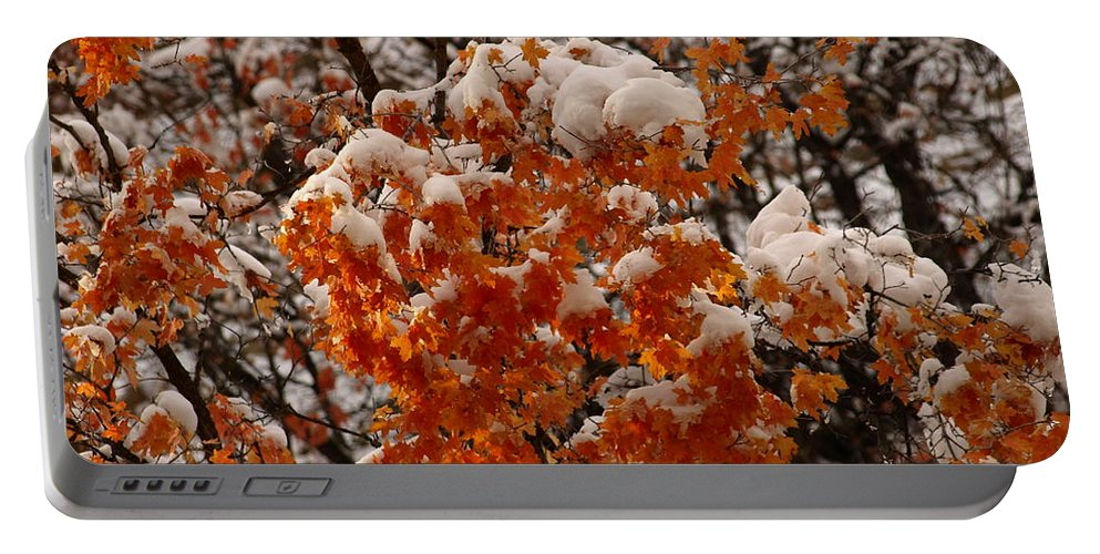 Fall Portable Battery Charger featuring the photograph When Fall Meets Winter by DeeLon Merritt
