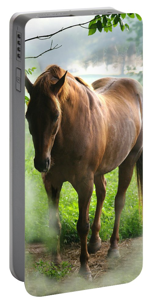 Jenny Gandert Portable Battery Charger featuring the photograph When You Dream Of Horses by Jenny Gandert