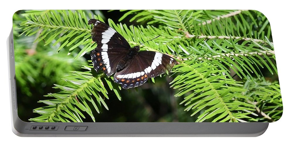 Butterflies. White Admiral Portable Battery Charger featuring the photograph White Admiral On Tree by Hella Buchheim