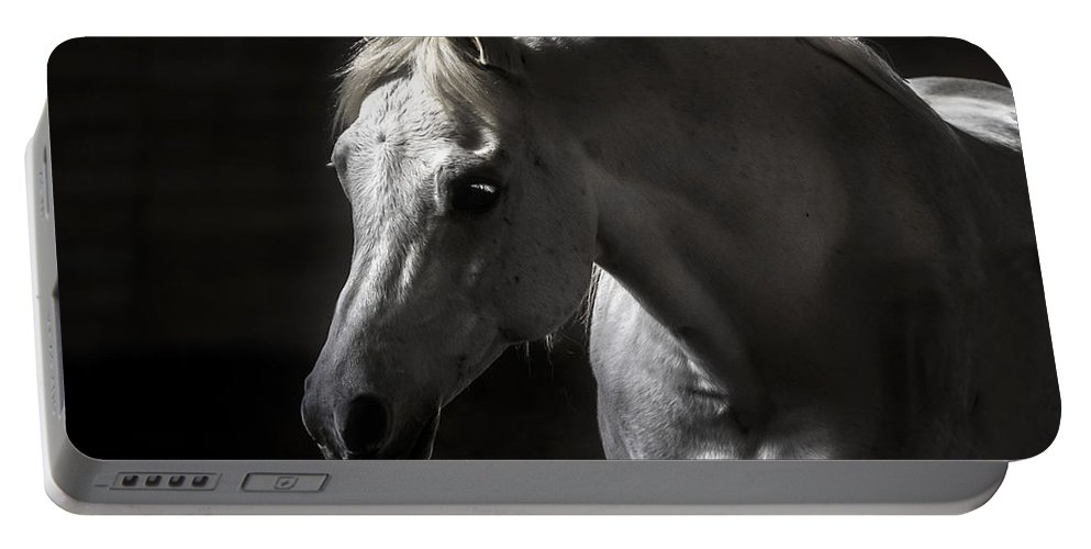 White Beauty Portable Battery Charger featuring the photograph White Beauty by Wes and Dotty Weber