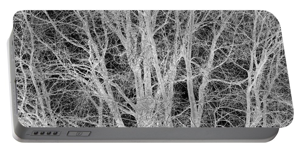 Tree Portable Battery Charger featuring the digital art White Branches by Munir Alawi