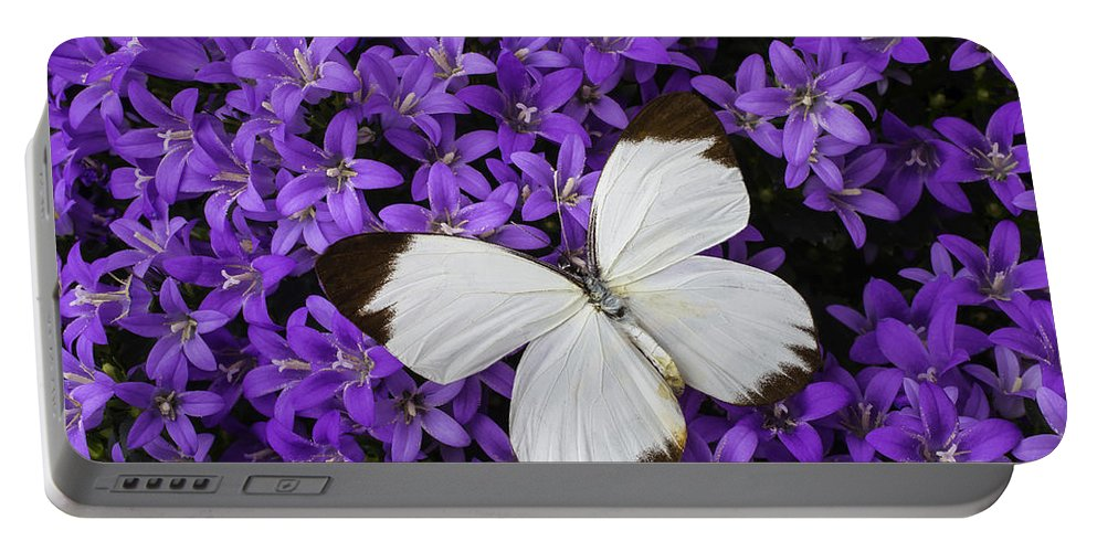 Purple Portable Battery Charger featuring the photograph White Butterfly On Campanula Get Mee by Garry Gay