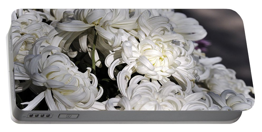 Clay Portable Battery Charger featuring the photograph White Chrysanthemum by Clayton Bruster