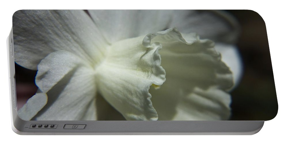 Flower Portable Battery Charger featuring the photograph White Daffodil by Teresa Mucha