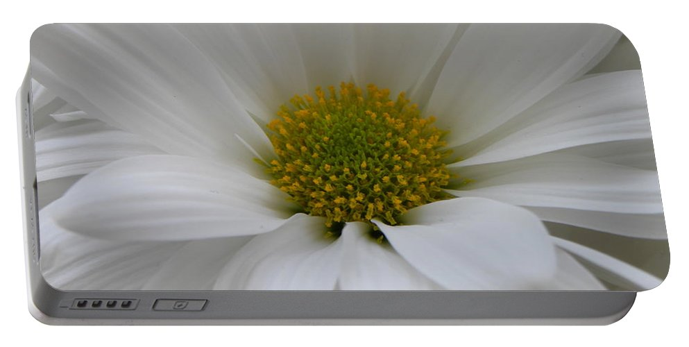 Nature Portable Battery Charger featuring the photograph White Daisy by Shannon Turek