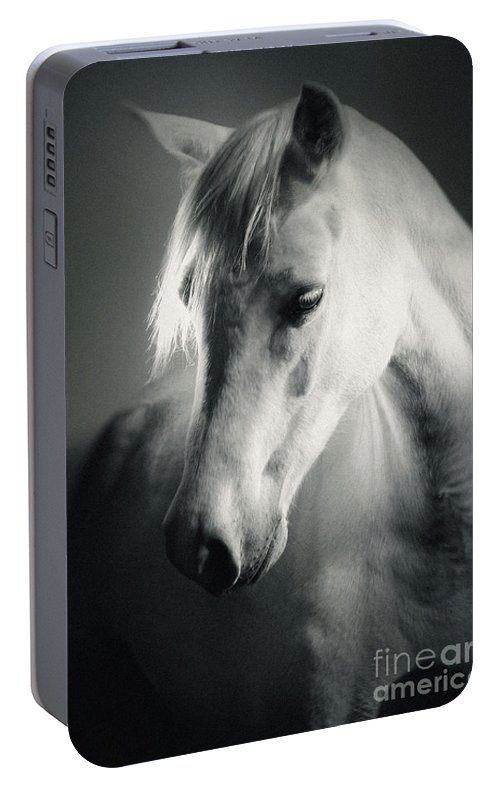 755623d3fa1 Horse Portable Battery Charger featuring the photograph White Horse Head  Art Portrait by Dimitar Hristov
