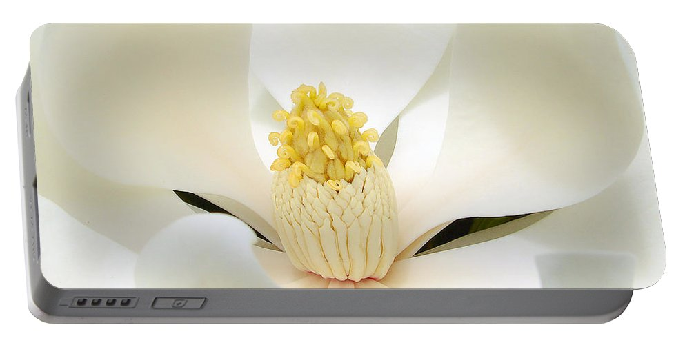 Flower Portable Battery Charger featuring the photograph White Light by Blair Wainman