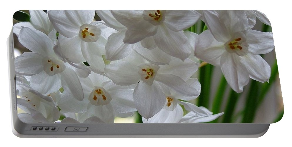 Spring Flowers Portable Battery Charger featuring the photograph White Narcissi Spring Flower 2 by Joan-Violet Stretch