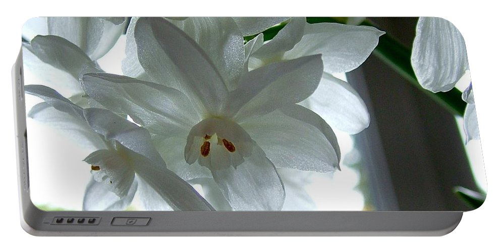 Spring Flowers Portable Battery Charger featuring the photograph White Narcissi Spring Flower by Joan-Violet Stretch