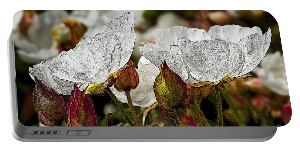 White Flowers Portable Battery Charger featuring the photograph White Paper Petals by Kelley King