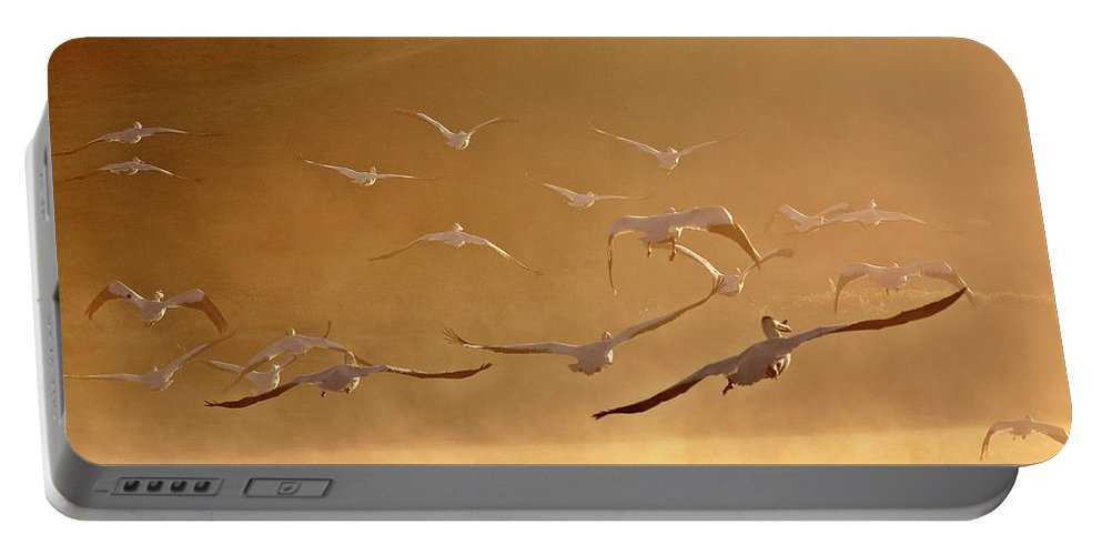 American Portable Battery Charger featuring the digital art White Pelicans Flying Through Morning Mist Over River by Mark Duffy