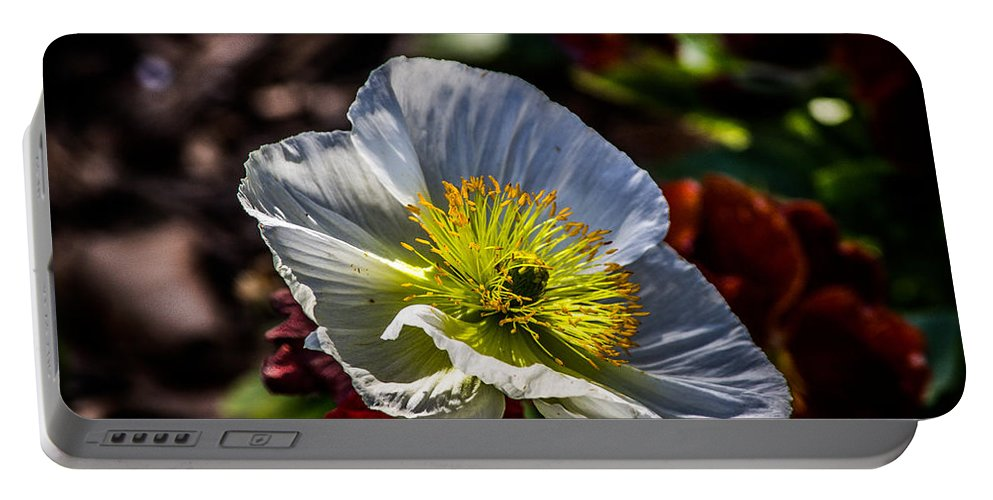 Poppy Portable Battery Charger featuring the photograph White Poppy by Anthony Evans