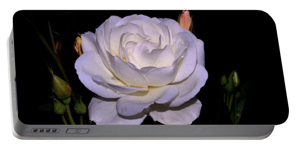 Rose Portable Battery Charger featuring the photograph White Rose 006 by George Bostian