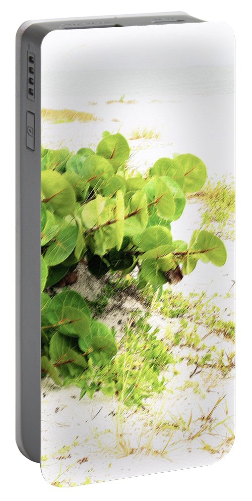 Florida Portable Battery Charger featuring the photograph White Sand Beach by Ian MacDonald