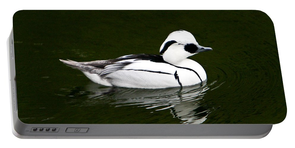 White Portable Battery Charger featuring the photograph White Smew Duck On Silver Pond by Douglas Barnett