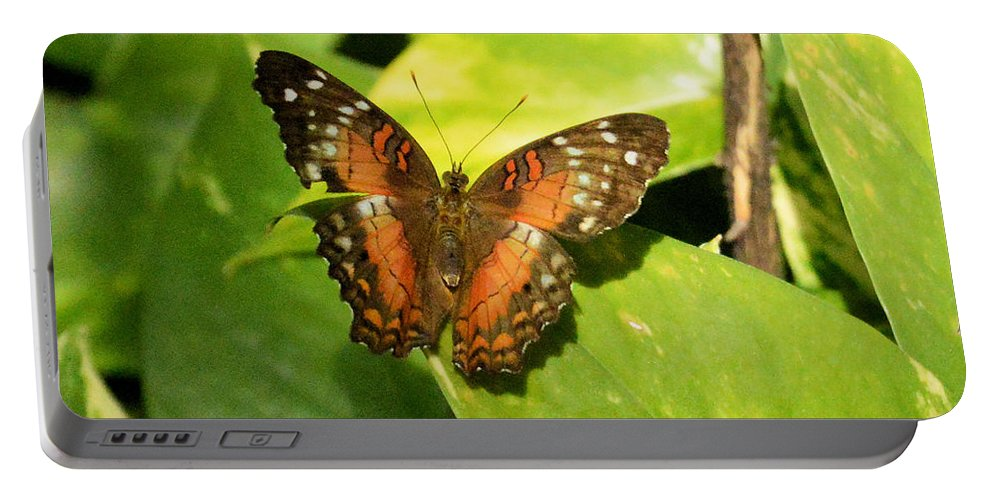 Flower Portable Battery Charger featuring the photograph White Spotted Butterfly by Wendy Fox