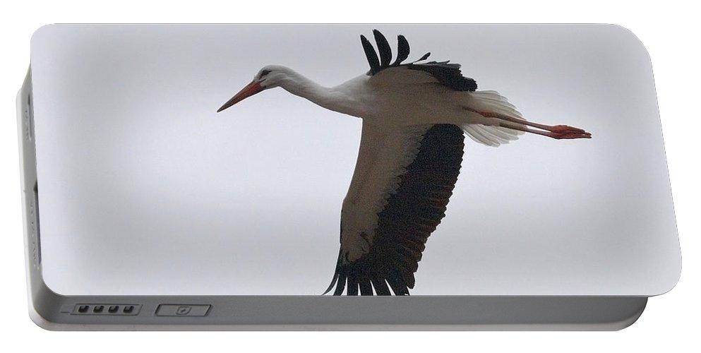 Lehtokukka Portable Battery Charger featuring the photograph White Stork 2 by Jouko Lehto