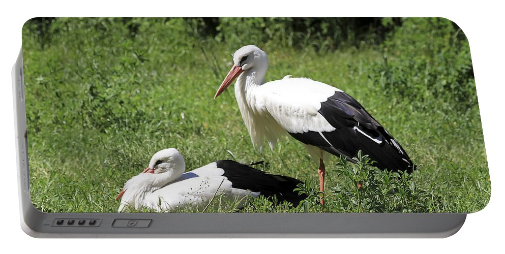 Bird Portable Battery Charger featuring the photograph White Storks by Teresa Zieba
