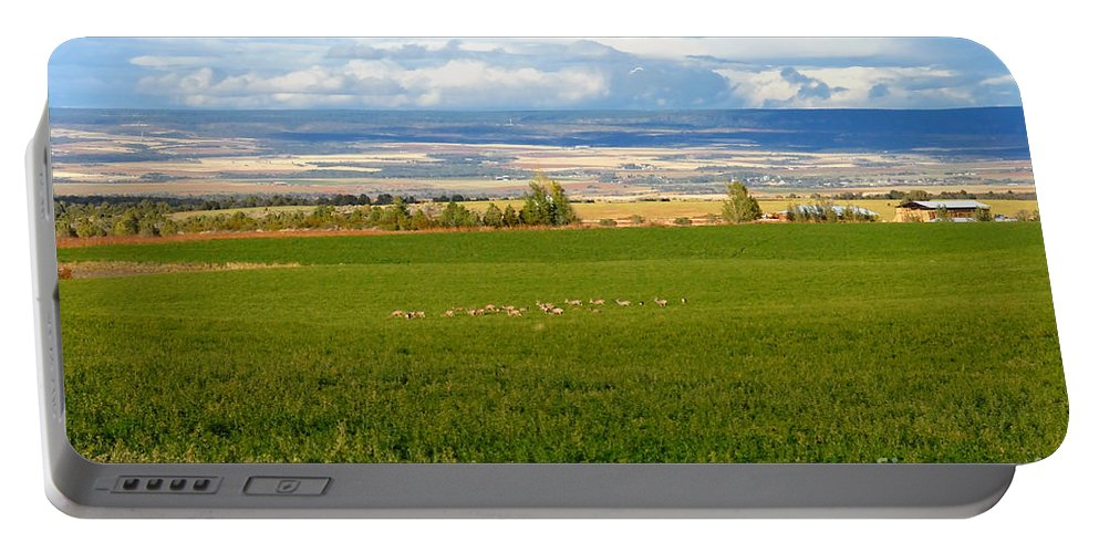 White Tail Deer Portable Battery Charger featuring the photograph White Tails In The Field by David Lee Thompson