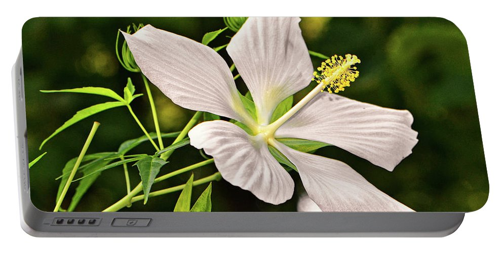 Hibiscus Portable Battery Charger featuring the photograph White Texas Star Hibiscus 003 by George Bostian