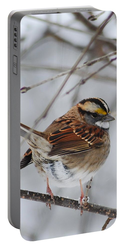 White-throated Sparrow Portable Battery Charger featuring the photograph White Throated Sparrow 2 by Michael Peychich