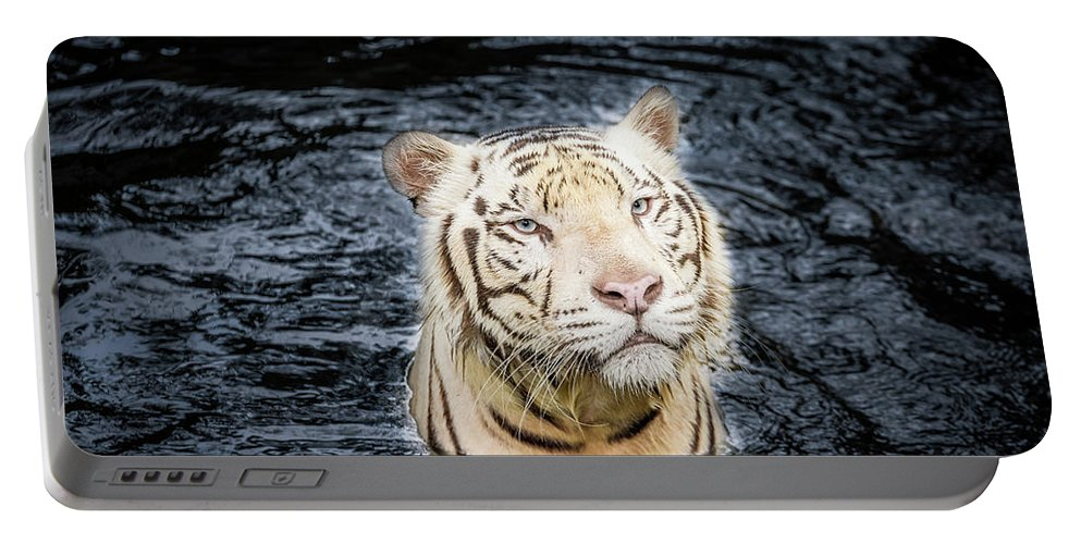 Wild Portable Battery Charger featuring the photograph White Tiger 20 by Jijo George
