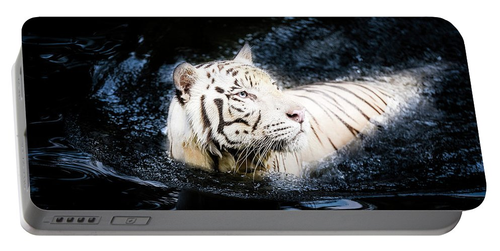 Wild Portable Battery Charger featuring the photograph White Tiger 21 by Jijo George