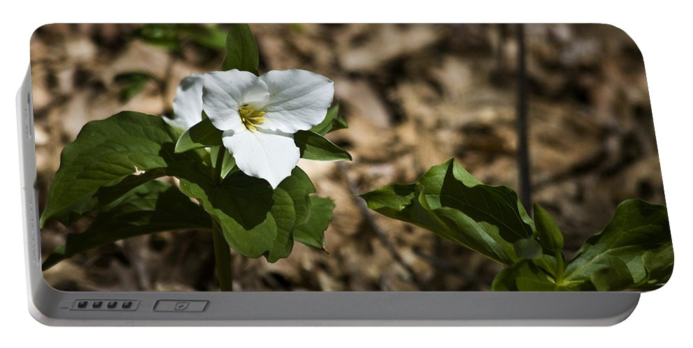 Trillium Portable Battery Charger featuring the photograph White Trillium by Teresa Mucha