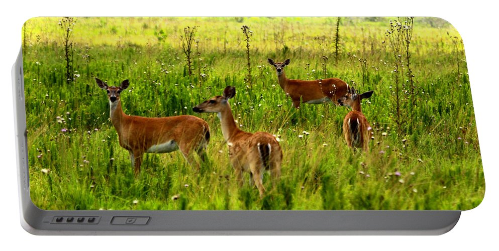 Whitetail Deer Portable Battery Charger featuring the photograph Whitetail Deer Family by Barbara Bowen