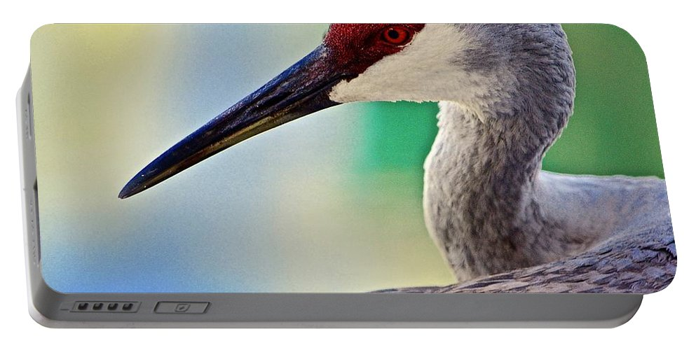 Sandhill Crane Portable Battery Charger featuring the photograph Who Is Out There? by Andrea Spritzer