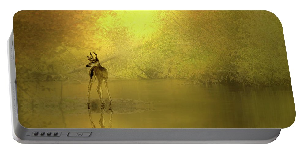 Buck Portable Battery Charger featuring the photograph A Silent Autumn Morning by Diane Schuster