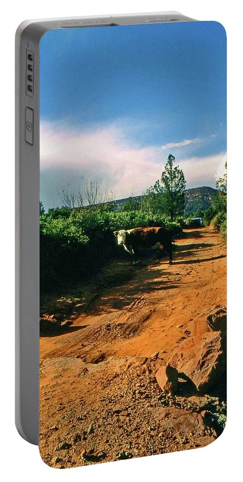 Sedona Portable Battery Charger featuring the photograph Why You Here by Gary Wonning