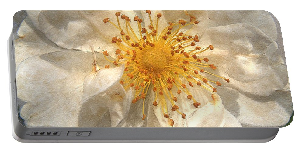 Rose Portable Battery Charger featuring the painting Wide Open by RC DeWinter