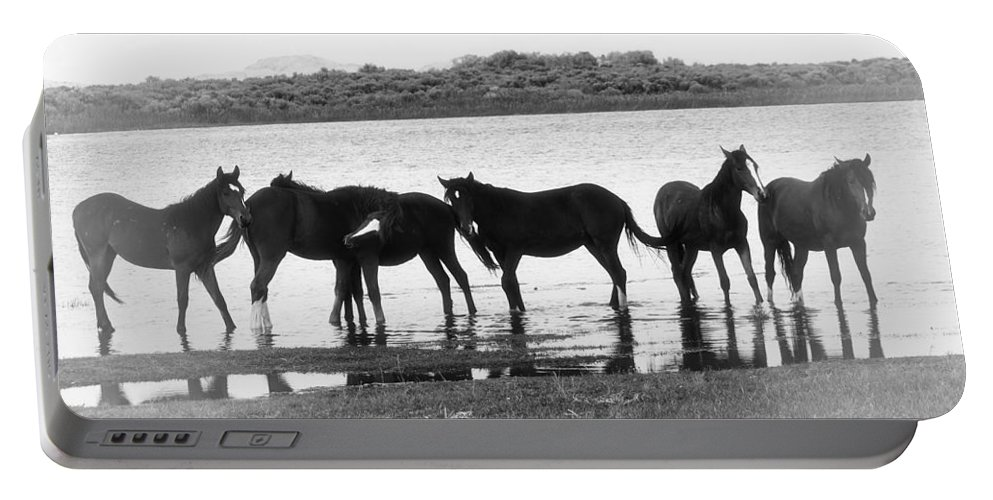 Horse Portable Battery Charger featuring the photograph Wild At Twilight by Terry Fiala