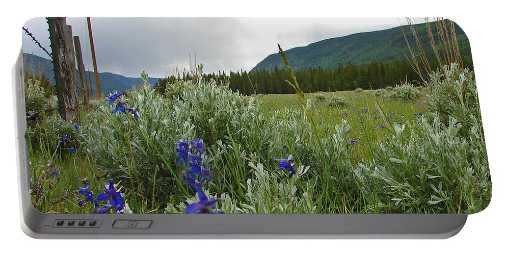 Wild Flowers Portable Battery Charger featuring the photograph Wild Delphinium by Heather Coen
