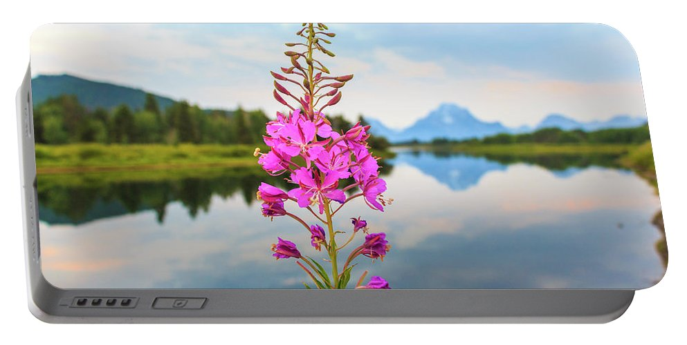 Purple Portable Battery Charger featuring the photograph Wild Flower by Scott Moore