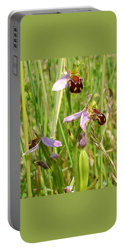 Flora Portable Battery Charger featuring the photograph Wild Meadow Bee Orchids by Susan Baker