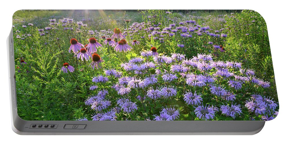 Black Eyed Susan Portable Battery Charger featuring the photograph Wild Mints And Coneflowers by Ray Mathis